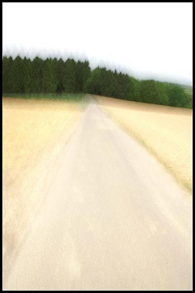 F_Landschaft_131-mai-700PX