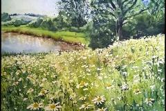 Landschaft mit bunter Blumenwiese