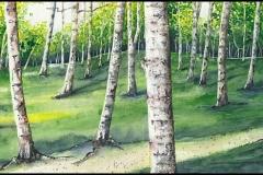Birkenwald - Aquarell