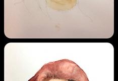 Portraitstudie